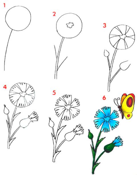 Цветы рисовать пошагово ребенку